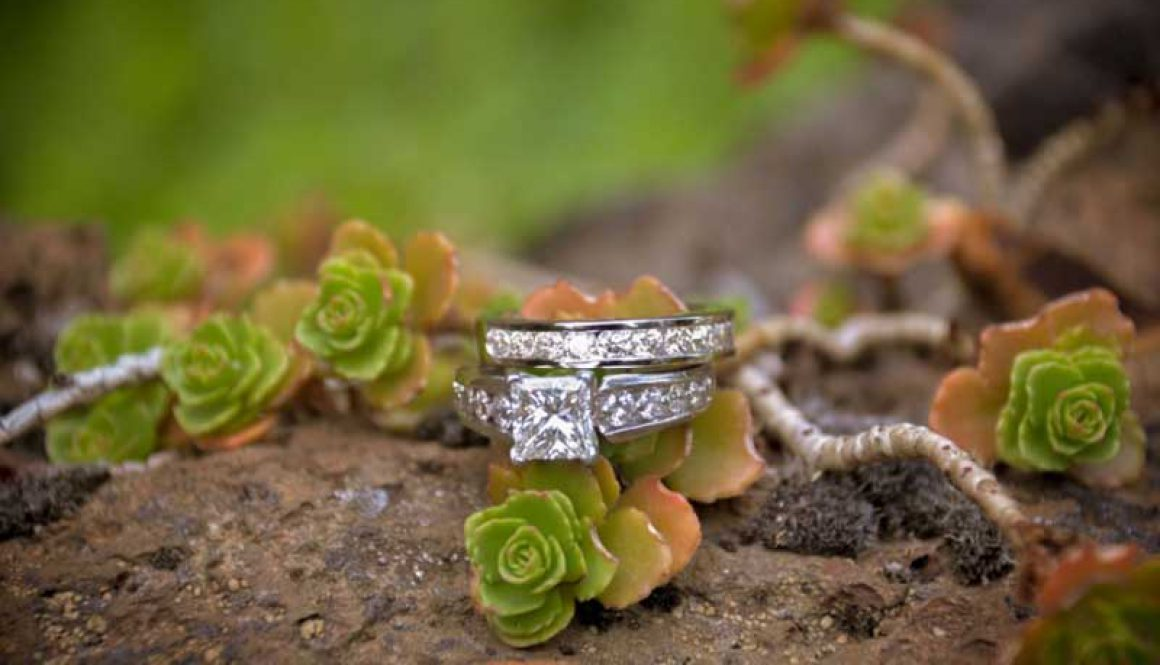 wedding-rings-and-things-creative-images-of-life-5